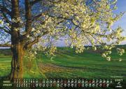 Kalendarz OR-P i Lubelskiego Urzędu Marszałkowskiego na 2007 rok (70x50 cm), fot. Wiesław Lipiec